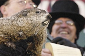 Punxsutawney Phil Makes His Annual Appearance