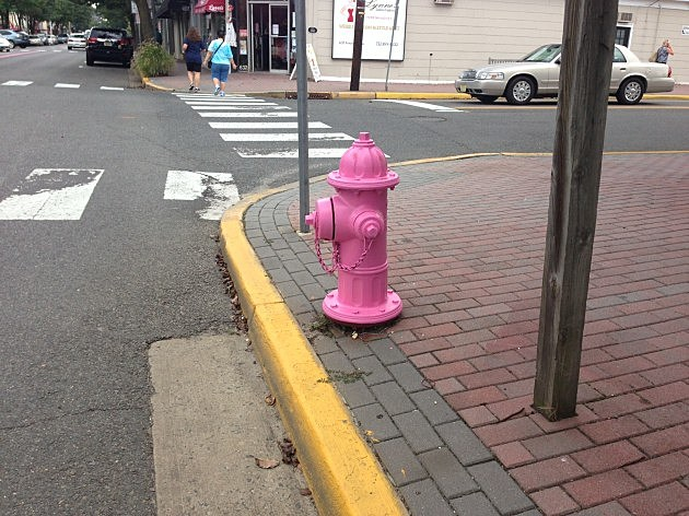 pink fire hydrant in Point Beach