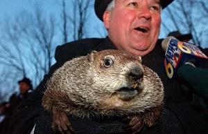 Punxsutawney Phil Emerges For Groundhog Day