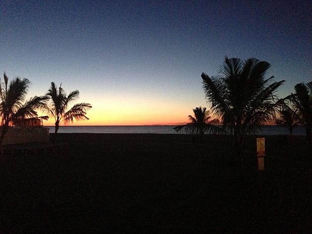 dawn at jenkinsons