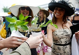 horce racing hats and mint juleps