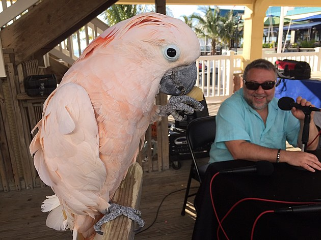 (Louie the parrot with Lou)